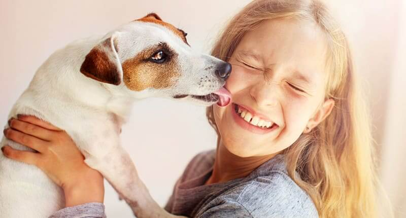 The Best Child-Friendly Pets For Your Household