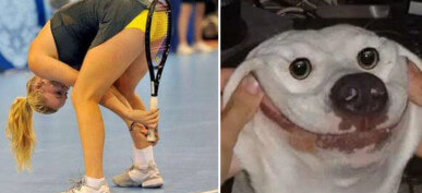 30+ Confusing And Hilarious Photos That You Won't Be Able To Stop Staring At