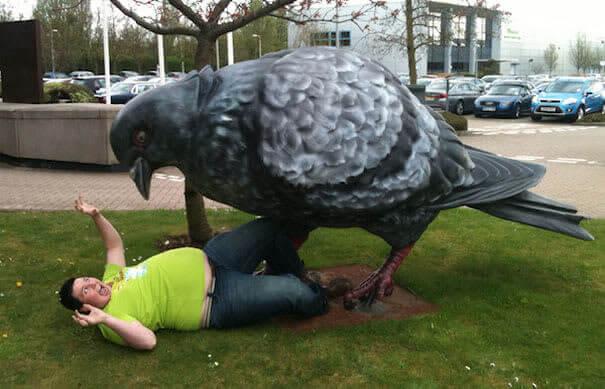 Un Pigeon Des Voyages De Gulliver