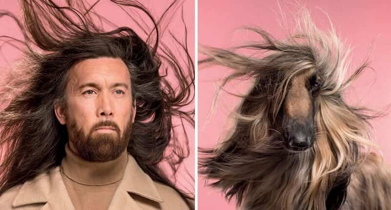 Dogs And Their Owners Are Put Side By Side By A Photographer, And The Resemblance Is Undeniable