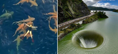 50 Photos Taken From Drones That Reveal More Than Expected