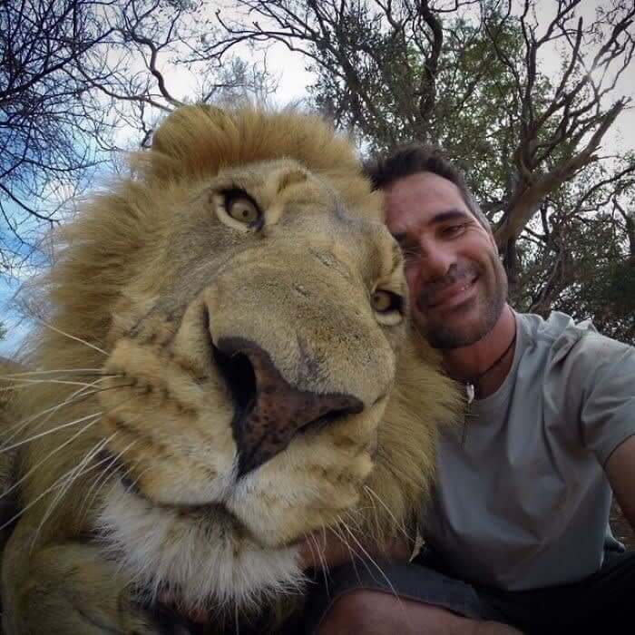The Perfect Selfie