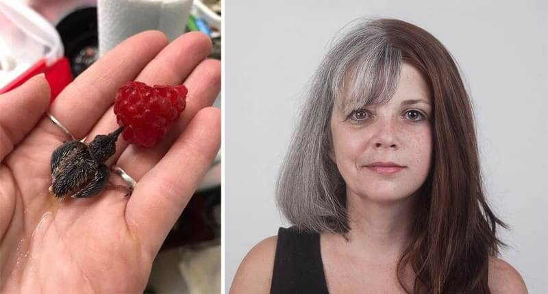 50 Fascinating Comparison Photos That Will Give You An Entirely New Point Of View