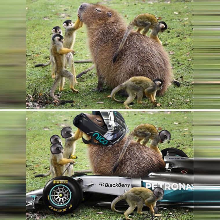 Descripción: Capybara: The Formula One Race Driver