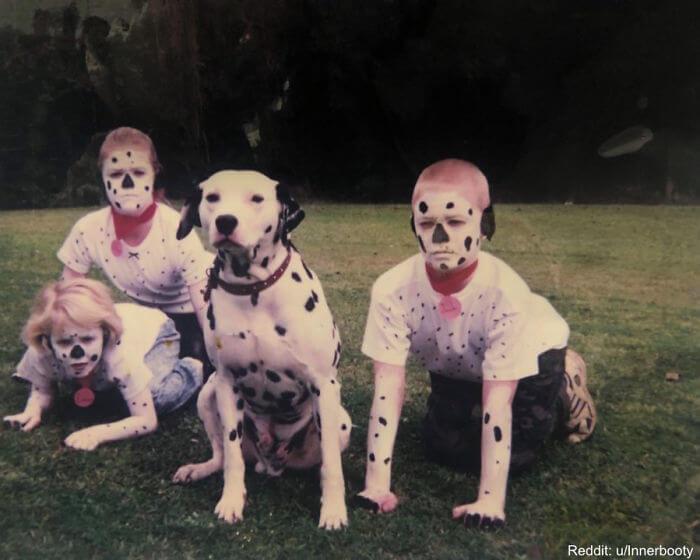 Até O Cão Parece Assustado