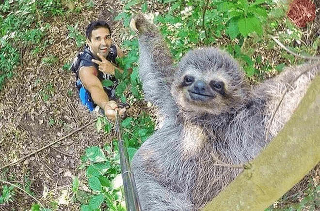 This Is What Selfie Sticks Were Made For
