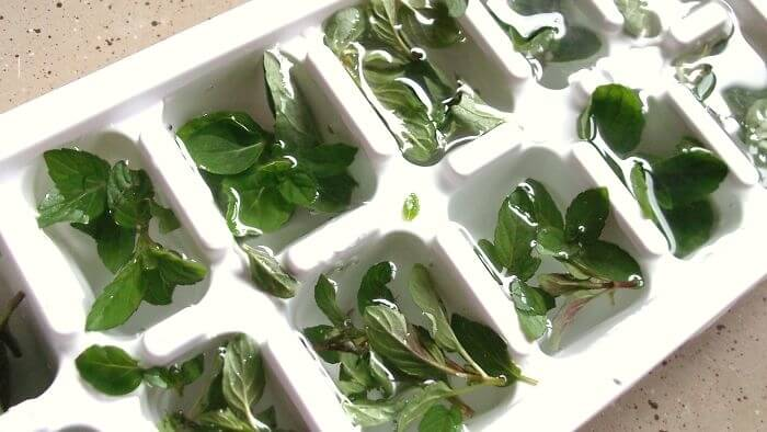 Freeze Fresh Herbs For This Reason