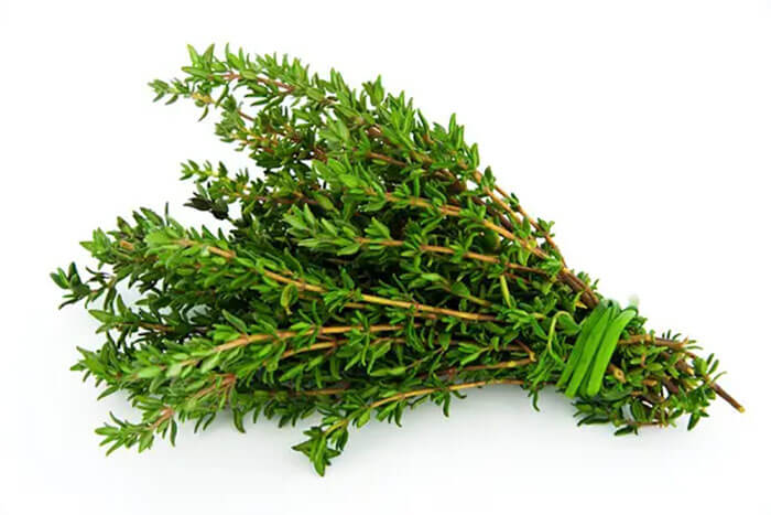 Oily Herbs Are Come Tied Together For A Reason