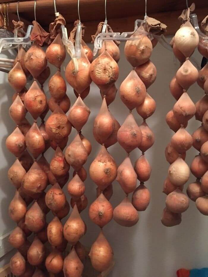 Make Onions Last Up To 8 Months By Storing Them In Pantyhose