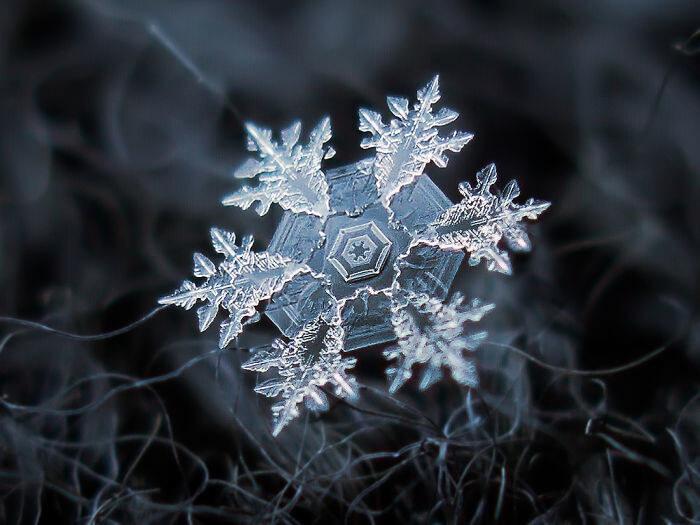 O Floco De Neve Mais Perfeito Que O Mundo Já Viu