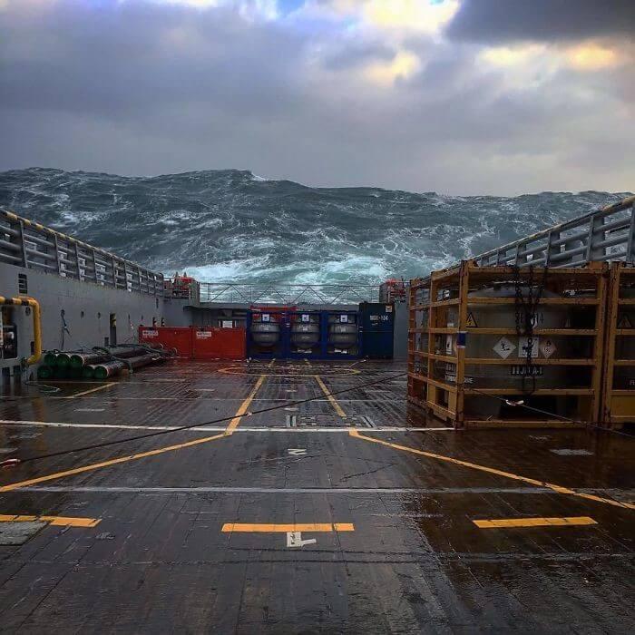"""""""Nós Vamos Precisar De Um Navio Maior"""""""