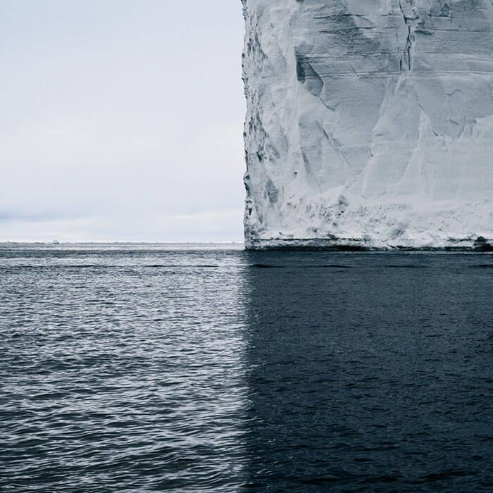 Antártica Ou Quatro Tons De Cinza?
