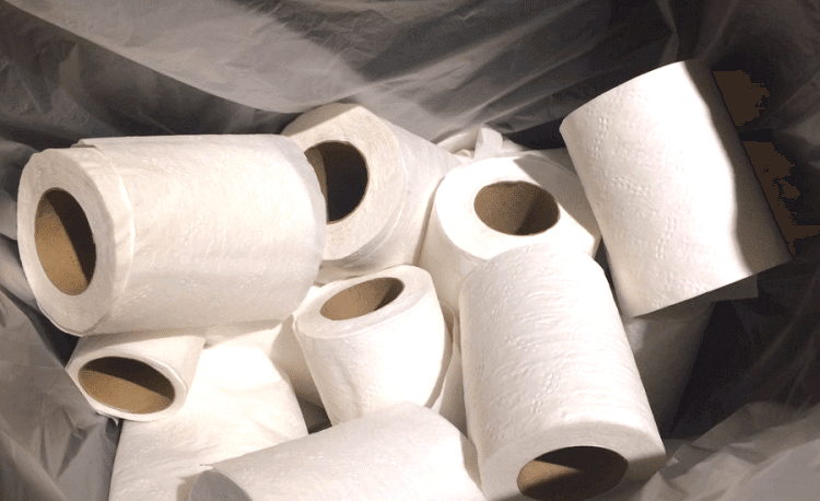 Toilets without Toilet Papers