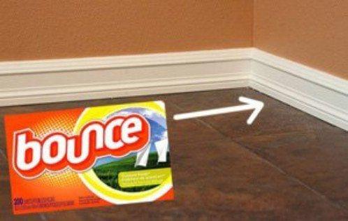 Limpe Rodapés Com Lenço Umidecido