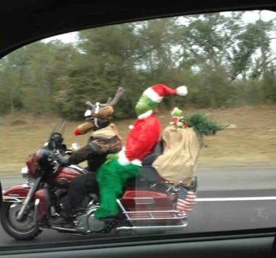On Their Way To Steal Christmas