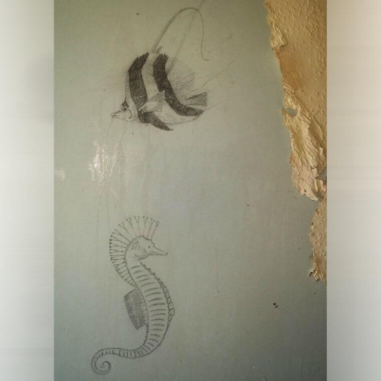 Marine Life Drawings Hidden Under Old Wallpaper