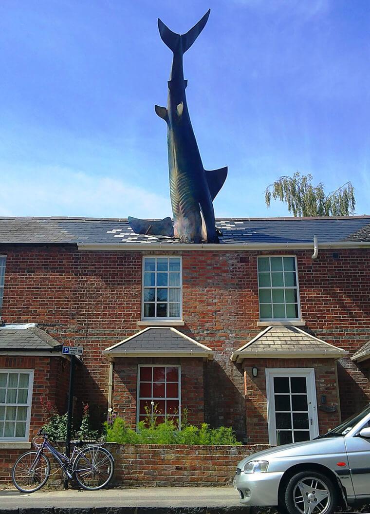 Sharknado Realmente Aconteceu?