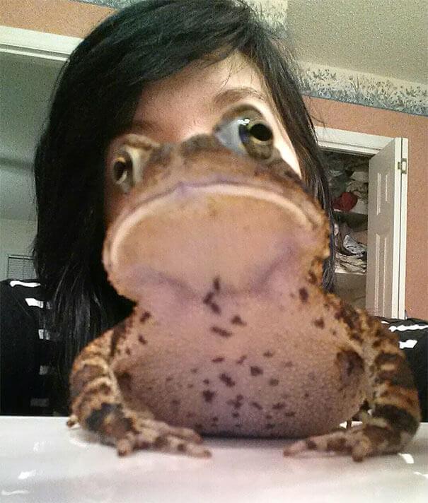 Mεταμορφώνομαι σε Βάτραχο