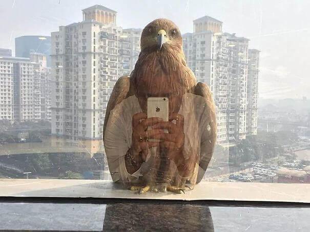 ''Πρώτα Όμως Μια Selfie''